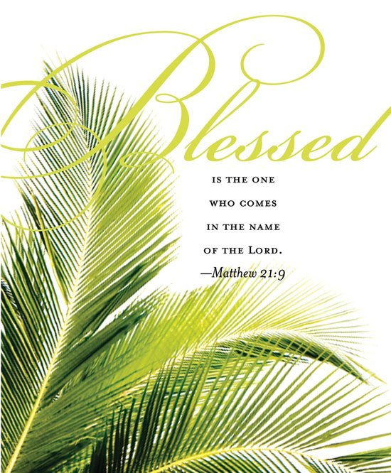 Holy Week Blog: The Sunday of Palms - Episcopal Church of the ...