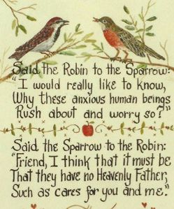 Robin to sparrow